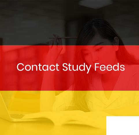 contact-studyfeeds